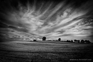 wide,wide,wide... by antarialus