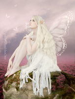 Sweet Fairy by ROSASINMAS
