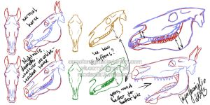 Crocomouthed horse head anatomy by capofamiglia