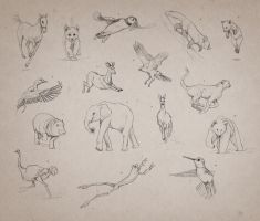Animal Gestures 1 by giselleukardi