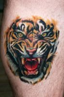 tiger tattoo by scoot75