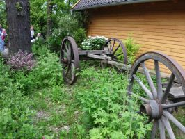 Old Wagon by JollyStock