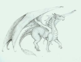 Dragon... by caithsidh