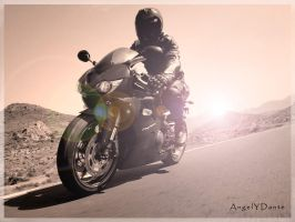 Soul Rider by AngelyDante
