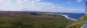 Dunstanburgh Castle View by minimaster