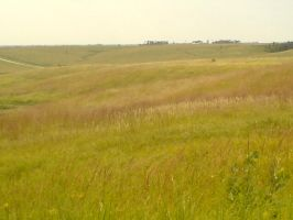 Wildprairie Country Side by jimmyselix