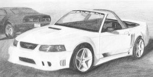 ford saleen mustang by Nightwolf55