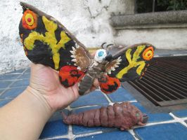 Mothra, the Giant Moth monster by Mexicankaiju