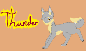 Thunder by XspottedclawX