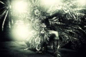 Carnaval 04 by funnyillusion