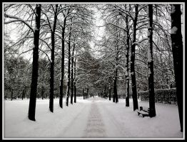 winter alley by Mittelfranke