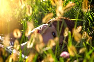 Last days of summer II by SarasMunilla