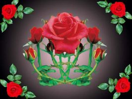 The Crown of Roses by Alyona-Eva