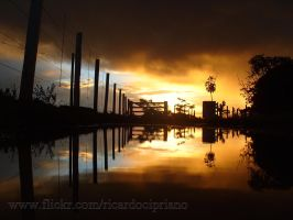 And after rain... by ricardocipriano