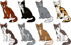 Cat Adopts - SOLD by BettaRae