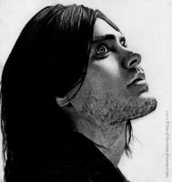 Jared by Lisa-Of-The-Moon