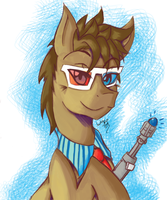 The Tenth: Doctor Whooves by LuckyRyo