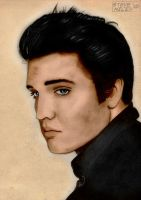 Elvis Presley Colour by Steve-Nice