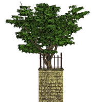 Tree And Base PNG Stock by Roys-Art