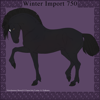 Nordanner Winter Import 750 by DemiWolfe
