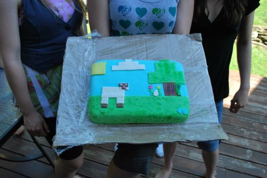 MINECRAFT cake by medli96