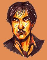 Remus Lupin - Felts by HPID