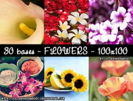 Bases - Flowers by lilbrokenangel