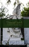 Gorgeous Gothic Angel by DamselStock