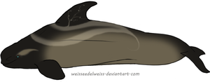 Wraith Whale Adoption: Fookee by WeisseEdelweiss