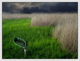 Boat on green by Mr-Vicent