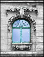 A window to Dunedin by eRiQ