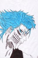 Grimmjow Jeagerjaques by Zimmander