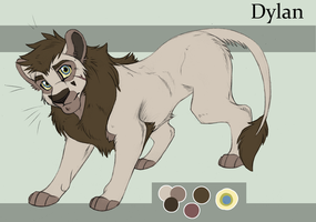 Dylan TEEN Ref SHEET 2013 by KasaraWolf
