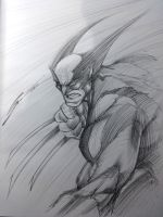 WOLVERINE SKETCH! by Sandoval-Art