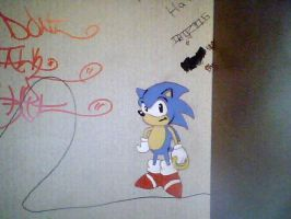 Sonic Graffiti On My Wall by DanielPalmer