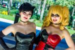 Catwoman and Harley Quinn 4 by Insane-Pencil