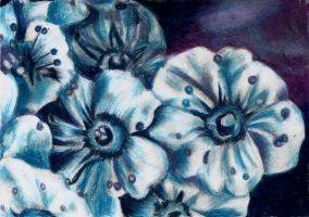 Small Flowers - oil pastel by ChloeMorris