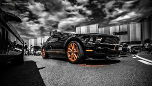 0563black Mustang by AmericanMuscle