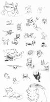 Cats by Frankyding90