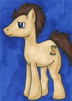 Supernova 2014 ACEO - Dr Whooves by bittykitty