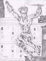 Nightwing New 52 by Lance-Danger