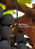 GTML Logo - Grape Vine by OneofakindKnight