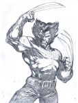 Wolvie sketch by komus