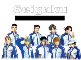 Seigaku Tennis Club by pheonicxfire