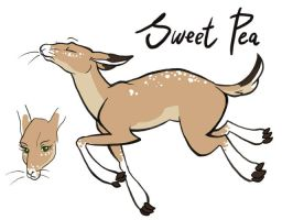 Sweet Pea the Hyksi by wolfie-janice