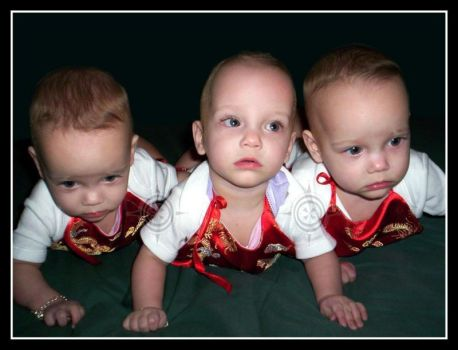 Learning to Crawl 2 - 2006 by Triplets