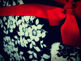 Ribbons and Bows by evelynrosalia