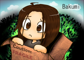 A Package by Bakumi