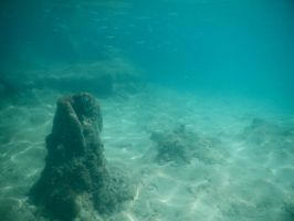 Bermuda 064  Underwater Stocks by FairieGoodMother