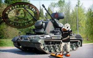 Ducks Sweep! by bbboz